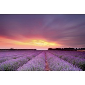 Φύση - Ηλιοβασίλεμα